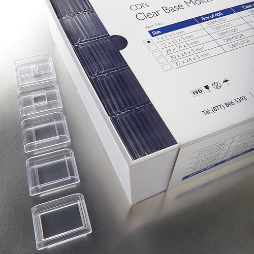 Disposable Base Molds, BX/400