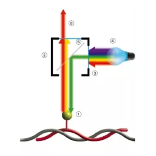 ZytoLight Single Color Probes