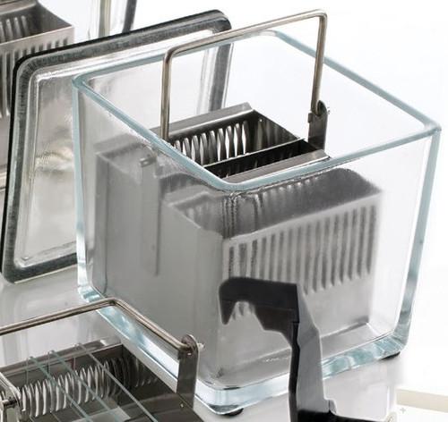 glass Slide Stain Dish, 30 Slide, empty