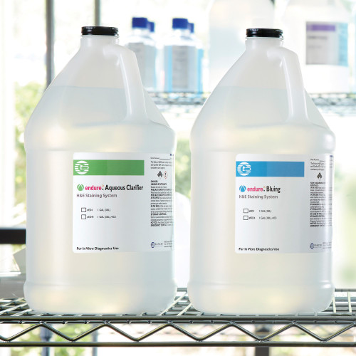Endure™ Bluing H&E Stain System